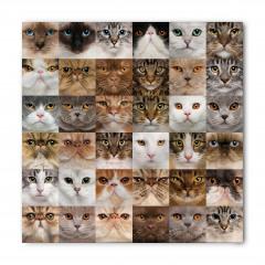 Kedi Yüzleri Desenli Bandana Fular