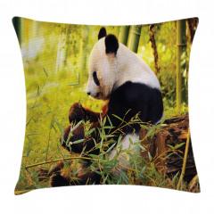 Bambu Yiyen Panda Yastık Kırlent Kılıfı