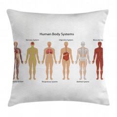 İnsan Vücudu Desenli Yastık Kırlent Kılıfı