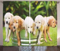 Sevimli Islak Köpekler Temalı Fon Perde Yeşil