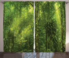 Yeşil Orman Manzaralı Fon Perde Ağaç Doğa Trend