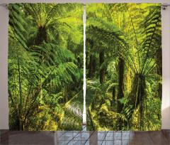Doğa Yürüyüşü Temalı Fon Perde Yeşil Ağaç Orman