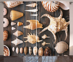 Deniz Kabuğu Desenli Fon Perde Ahşap Arka Plan