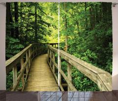 Ormandaki Ahşap Yol Fon Perde Yeşil Doğa
