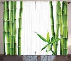 Bambu ve Yaprak Desenli Fon Perde Yeşil Trend