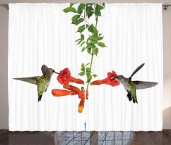 Kırmızı Çiçek ve Kuş Fon Perde Çeyizlik