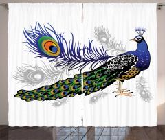 Tavus Kuşu Desenli Fon Perde Beyaz Fon Şık Tasarım