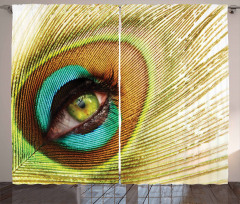 Göz Desenli Fon Perde Rengarenk Tavus Kuşu Temalı