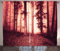 Orman Dökülmüş Yaprak Fon Perde Kırmızı