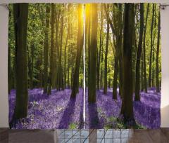 Güneş Orman ve Çiçek Fon Perde Yeşil ve Mor