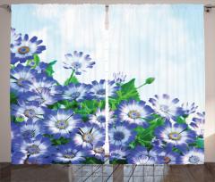 Mavi Çiçek ve Gökyüzü Fon Perde Şık