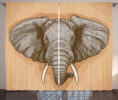 Fil Gravürü Desenli Fon Perde Kahverengi