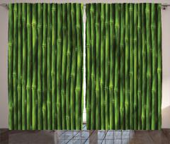 Yeşil Bambu Desenli Fon Perde Şık Dekoratif