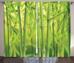 Dekoratif Bambu Desenli Fon Perde Yeşil