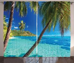 Tropik Adadaki Palmiye Fon Perde Palmiye Mavi Yeşil