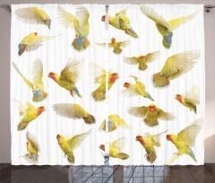 Kuş Temalı Fon Perde Beyaz Sarı Şık Tasarım