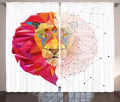 Geometrik Aslan Desenli Fon Perde Rengarenk