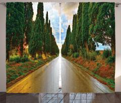 Ağaçlı Yol ve Yağmur Fon Perde Yeşil