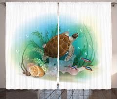 Turkuaz Deniz Desenli Fon Perde Kaplumbağalı