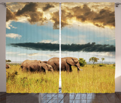 Fil ve Bulutlu Gökyüzü Fon Perde Doğa