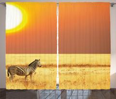 Zebra ve Güneş Temalı Fon Perde Şık Tasarım