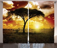 Ağaç ve Hayvan Sürüsü Fon Perde Sarı