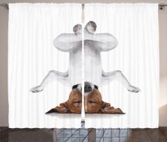 Meditasyon Yapan Köpek Fon Perde Meditasyon Beyaz