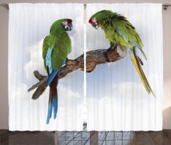 Yeşil Papağan Desenli Fon Perde Şık Tasarım