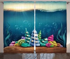 Rengarenk Deniz Kabuğu Fon Perde Deniz Kabuğu Mavi