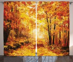 Orman ve Sonbahar Fon Perde Sarı
