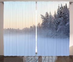 Karlı Çam Ağaçları Fon Perde Çam Ağaçları Beyaz