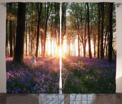 Huzurlu Orman Fon Perde Gün Batımı