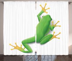 Yeşil Kurbağa Desenli Fon Perde Tropikal