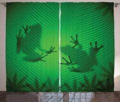 Kurbağa ve Yaprak Fon Perde Yeşil