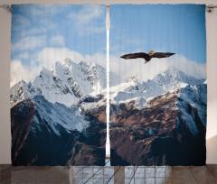 Karlı Dağda Uçan Kartal Fon Perde Kartal Kış Beyaz