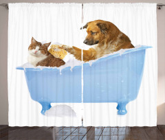 Kedi Köpek Dostluğu Fon Perde Mavi Beyaz