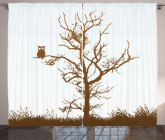 Komik Baykuş Desenli Fon Perde Ağaçta Komik Baykuş Desenli