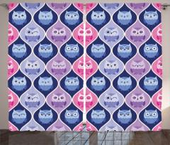 Baykuş Cümbüşü Fon Perde Şık Tasarım Pembe Mavi