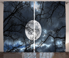 Ay ve Ağaçlar Fon Perde Ağaçlar Ay Işığı Siyah Mavi