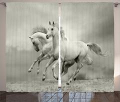 Özgür Atlar Fon Perde Özgür Atlar Temalı