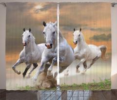 Koşan Atlar Fon Perde Özgür Beyaz Atlar