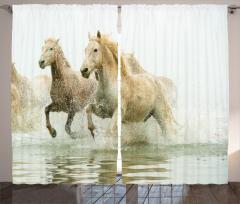 Suda Koşan Atlar Fon Perde Vahşi Doğa Atlar