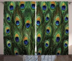 Tavus Kuşu Desenli Fon Perde Yeşil Lacivert Şık