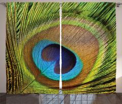 Tavus Kuşu Temalı Fon Perde Yeşil Kahverengi Mavi