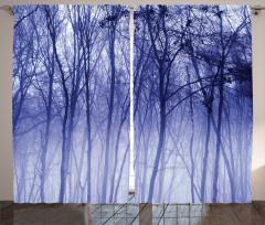 Sisli Orman Manzaralı Fon Perde Mavi Ağaç Doğa