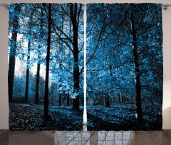 Sonbahar Temalı Fon Perde Mavi Orman Ağaç Yaprak