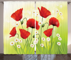 Baharın Çiçekleri Fon Perde Gelincik Papatya