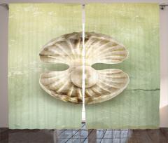 Nostaljik Deniz Kabuğu Fon Perde Nostaljik Deniz Kabuğu Bej
