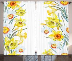 Sulu Boya Nergisler Fon Perde Sarı Nergis Çiçeği