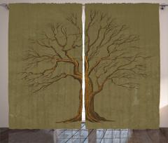 Sonbahar Ağaçları Fon Perde Sonbahar Ağaç